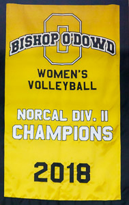 Norcal Div II 2018 Champions banner