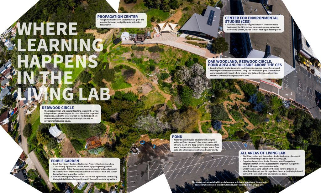 Diagram of where learning happens in the Living Lab